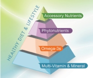 Nutrition Supplement Pyramid